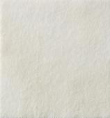 Curativo - Coloplast - Biatain Alginate AG - Alginato com Prata - unidade